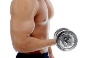 Effektiv Fett verbrennen mit Krafttraining